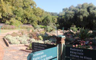 Free State National Botanical Gardens pathway2